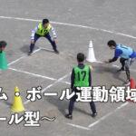 感染予防に配慮した小学校の体育学習